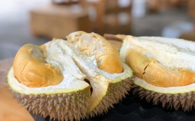 11 popular Thai Fruits and how to say them