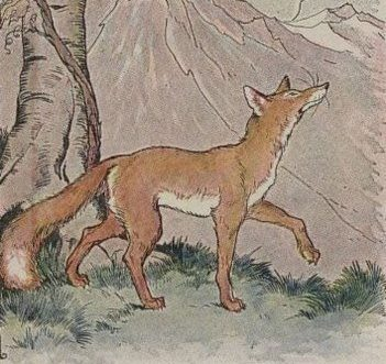 The Fox and The Grapes - Thai Listening Practice