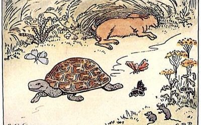 The tortoise and The hare – Thai Listening Practice with Transcription