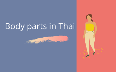 Learn how to say the Body parts in Thai Language
